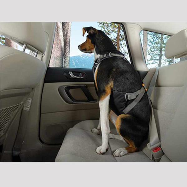 Ruffwear Load Up Car Harness Car Restraint For Dogs