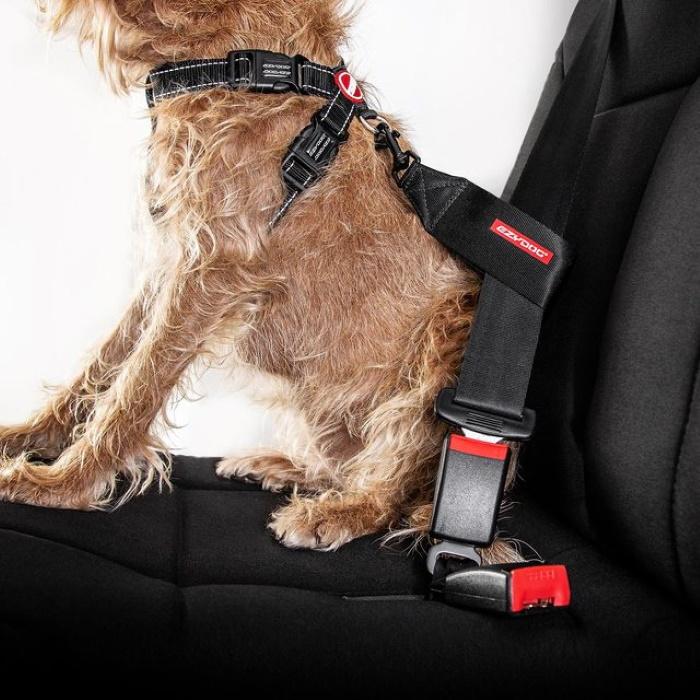 EzyDog Dog Car Restraint