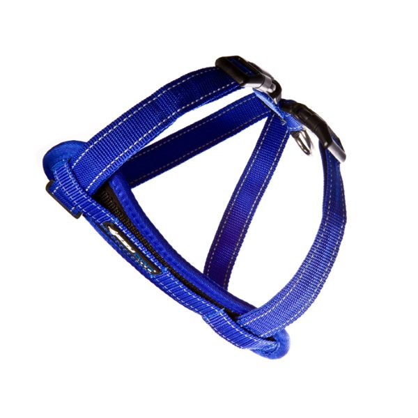 EzyDog Chestplate_Harness_Blue