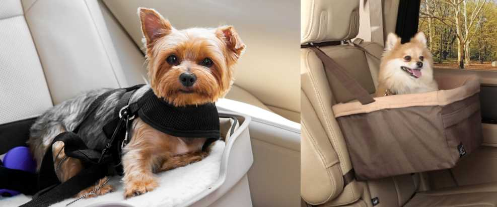 Dog Car Booster Seats Compared
