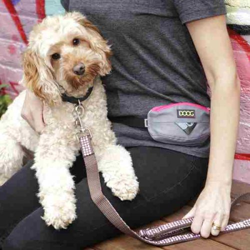 DOOG Mini Belt for Dogs Grey/Pink