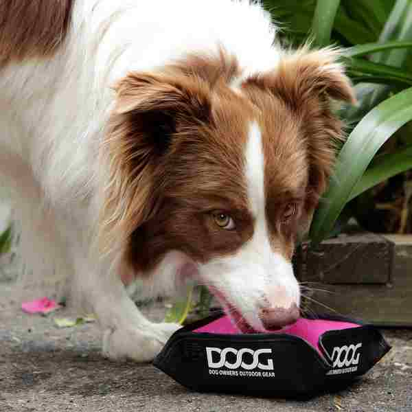 DOOG Pink foldable dog bowl