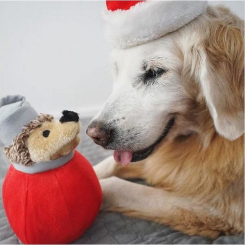 Holiday Heggie Dog Toy