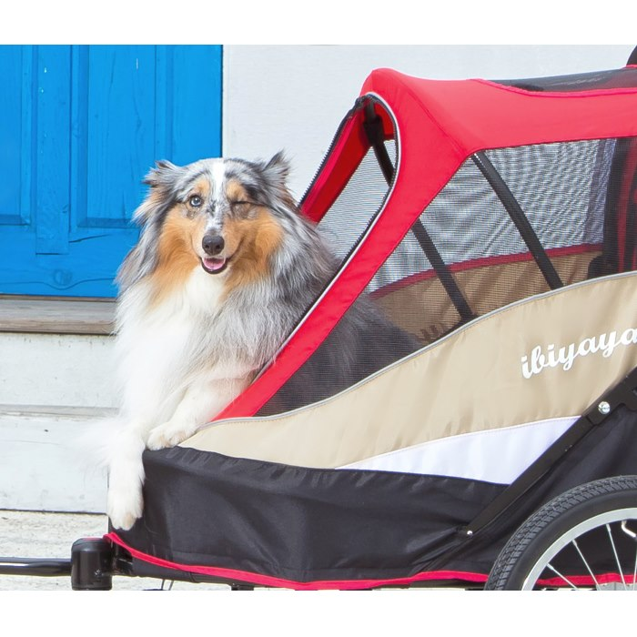 Dog bike trailer stroller red dog wink