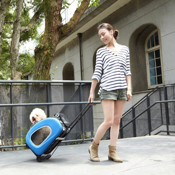 EVA 4in1 Pet Carrier Wheels Blue Dog and Girl