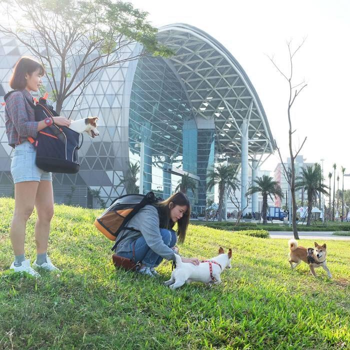 Ibiyaya Ultralight Backpack Dog Carriers