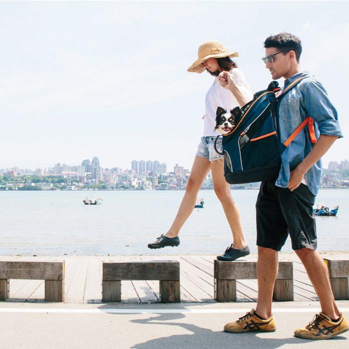 Ibiyaya Ultralight Backpack Pet Carrier