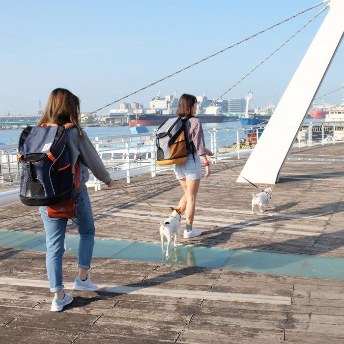 Ibiyaya Ultralight Backpack Pet Carriers
