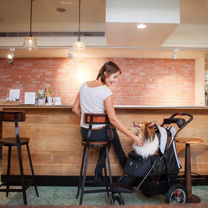 Turbo Pet Jogger Stroller Black Cafe