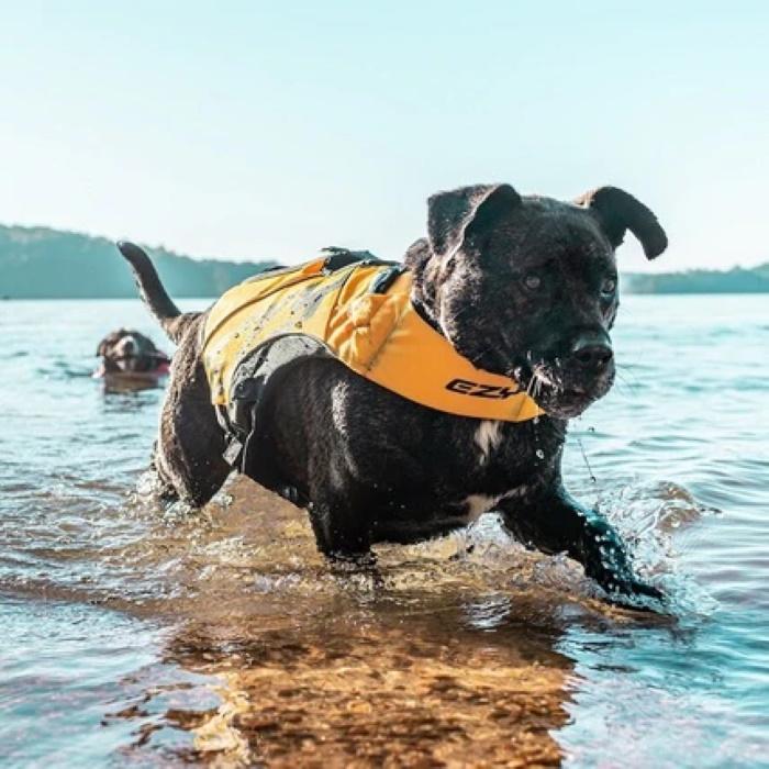 EzyDog DFD X2 Boost Dog Life Jacket YLW