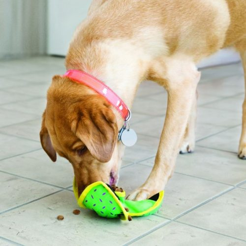 Kong Ballistic Hide n Treat Dog Toy