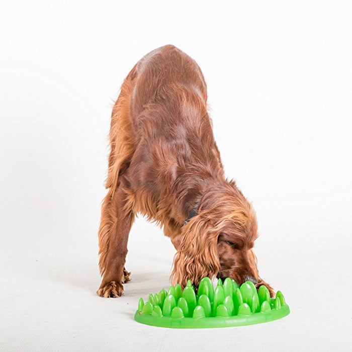 Northmate Green For Dogs Interactive Slow Feeder
