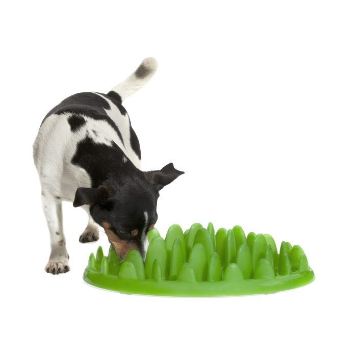 Northmate Green Interactive Slow Feed Dog Bowl