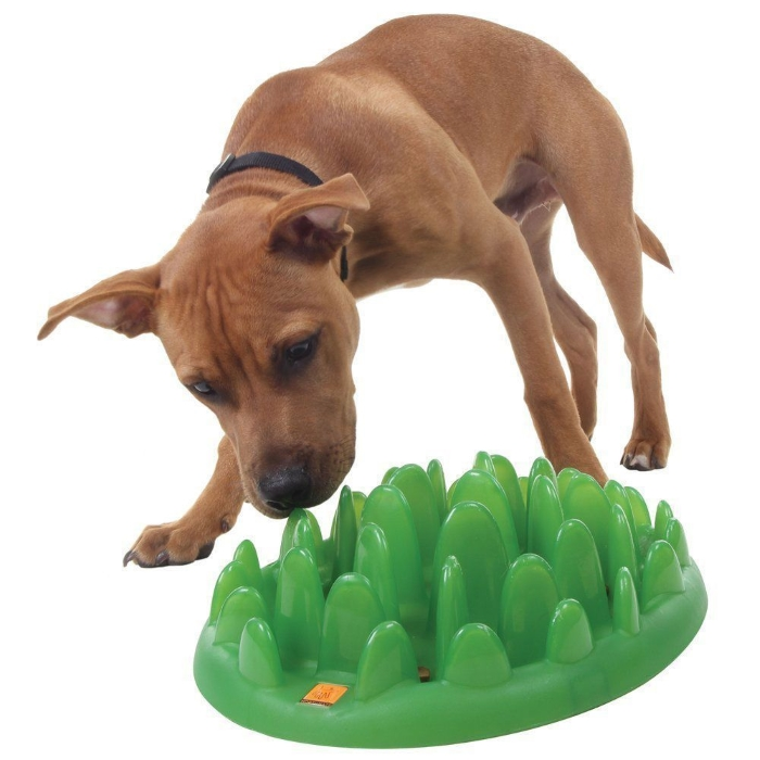 Northmate Green Interactive Slow Feeder for Dogs