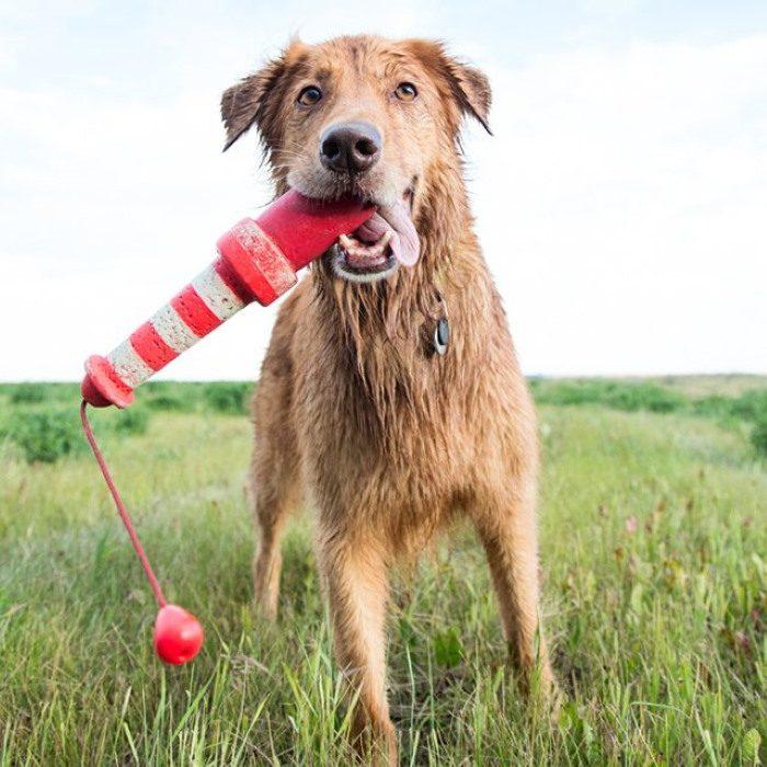 Rogz Lighthouse Floating Dog Toy