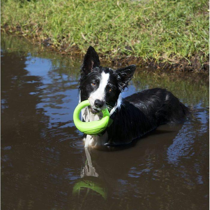 Rogz-Pop-Upz-Dog-Toy-Lime_River Dog
