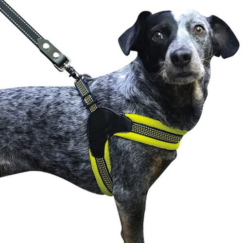 Sporn Mesh Easy Fit Harness_yellow_dog