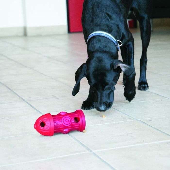 Kong Clicks Hydrant Treat Dispensing Dog Toy