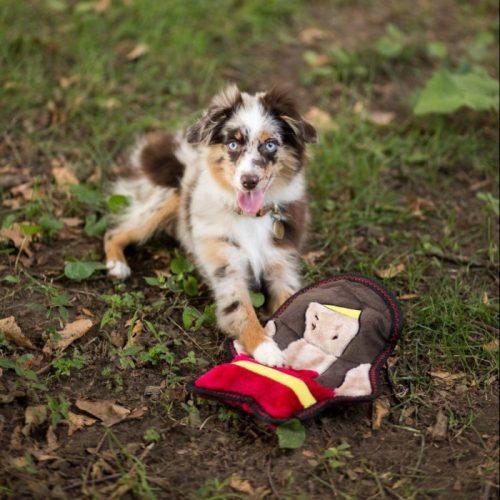 Z-Stitch Warriorz Helena the Heroine ZippyPaws Squeaker Dog Toy