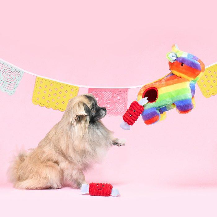 Zippy Burrow Festive Rainbow Pinata Dog Toy