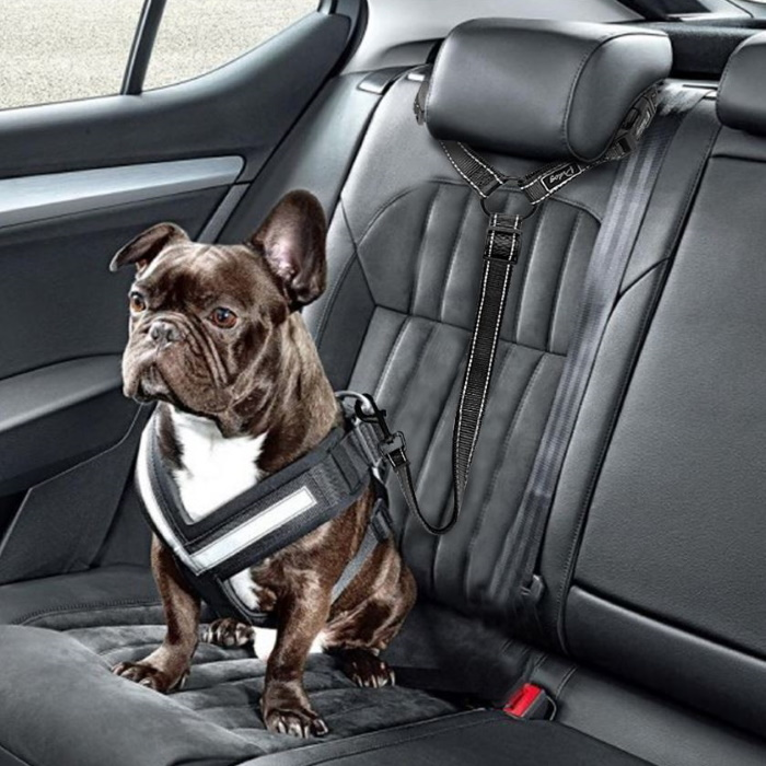 Car Headrest Restraint for Dogs