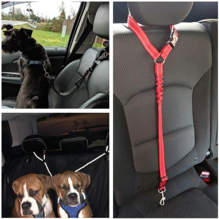 Adjustable Bungee Headrest restraint for dogs