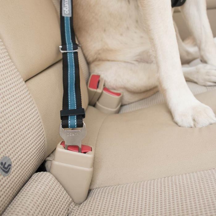 Kurgo Direct to Seat Belt Dog Tether Attachment