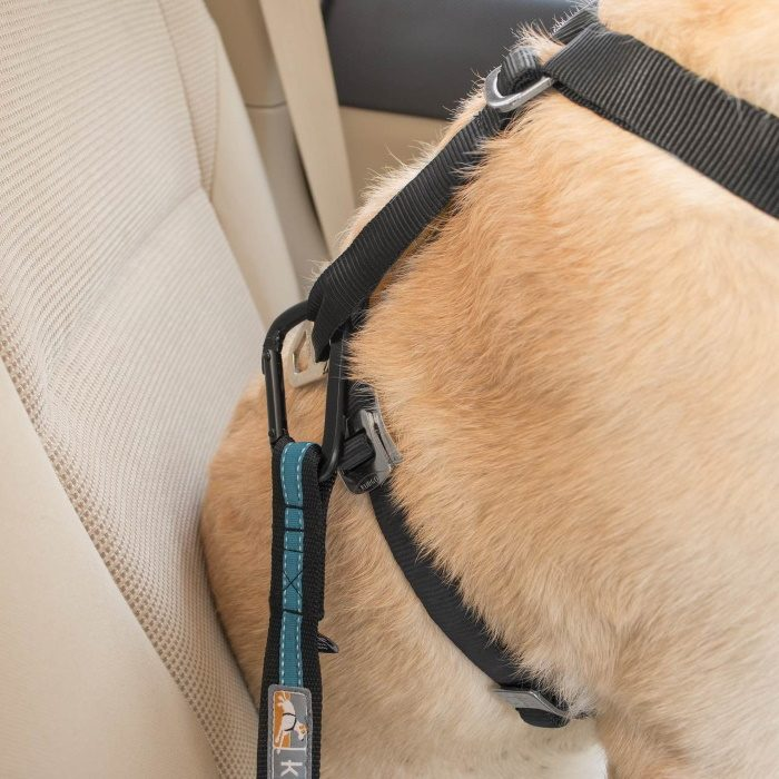 Kurgo Direct to Seat Belt Dog Tether_Carabiner