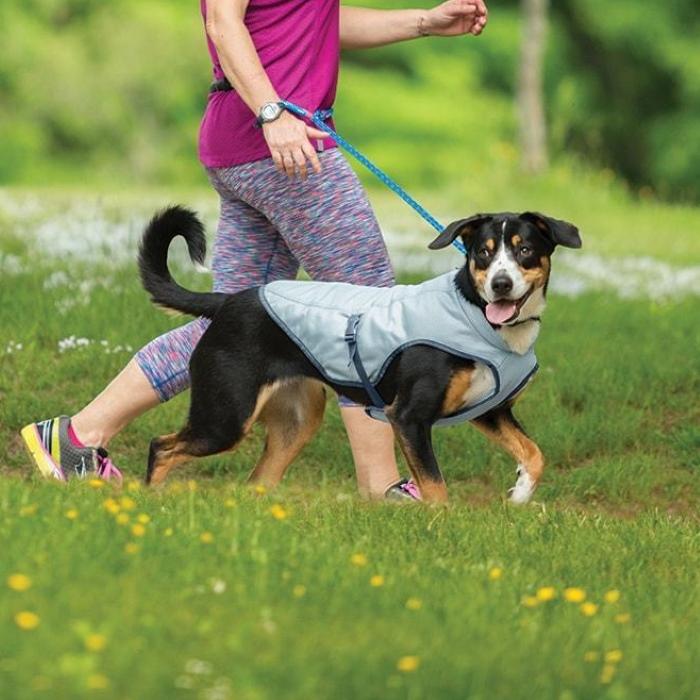 Kurgo Dog Core Cooling Coat