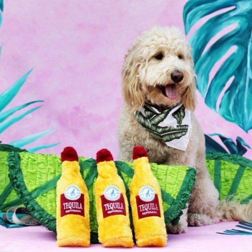Zippy Paws Crusherz Dog Toy_Tequila Lifestyle