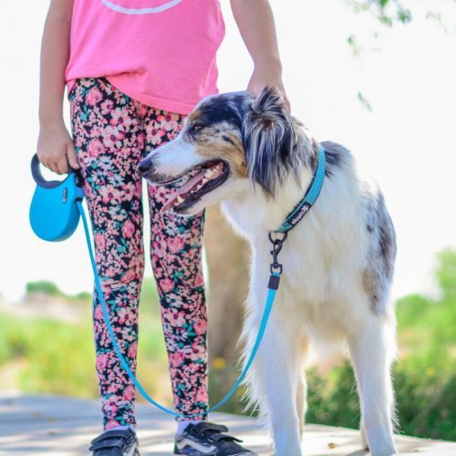 Blue Alcott Adventure Retractable Dog Lead