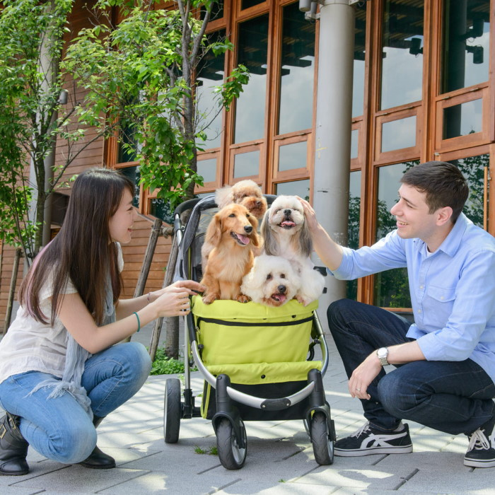 Ibiyaya Collapsible Retro Dog Stroller Green multiple dogs