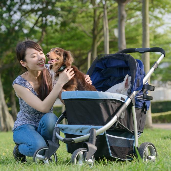 Ibiyaya Collapsible Retro Dog Stroller Navy Blue Pup