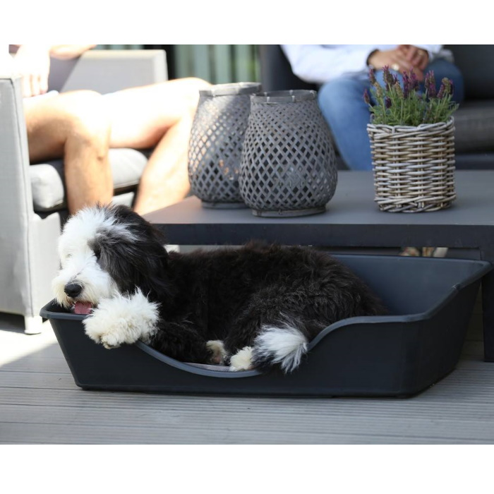 Wonderfold Collapsible Dog Bed Lifestyle 3