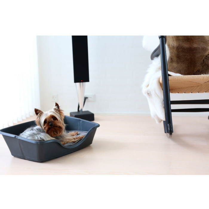 Wonderfold Collapsible Dog Bed Lifestyle 4