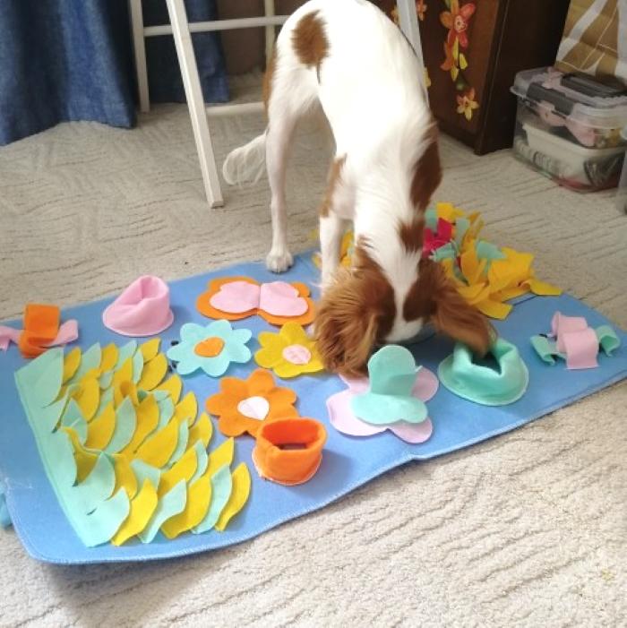 Interactive Dog Snuffle Activity Nosework Blanket