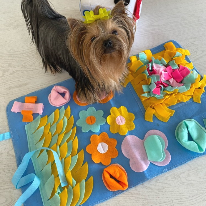 Interactive Dog Snuffle Activity Nosework Mat