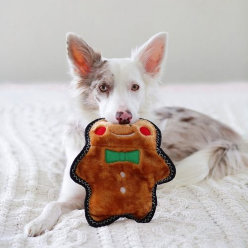 Zippy Paws ZStitch Holiday Gingerbread Man Dog Toy