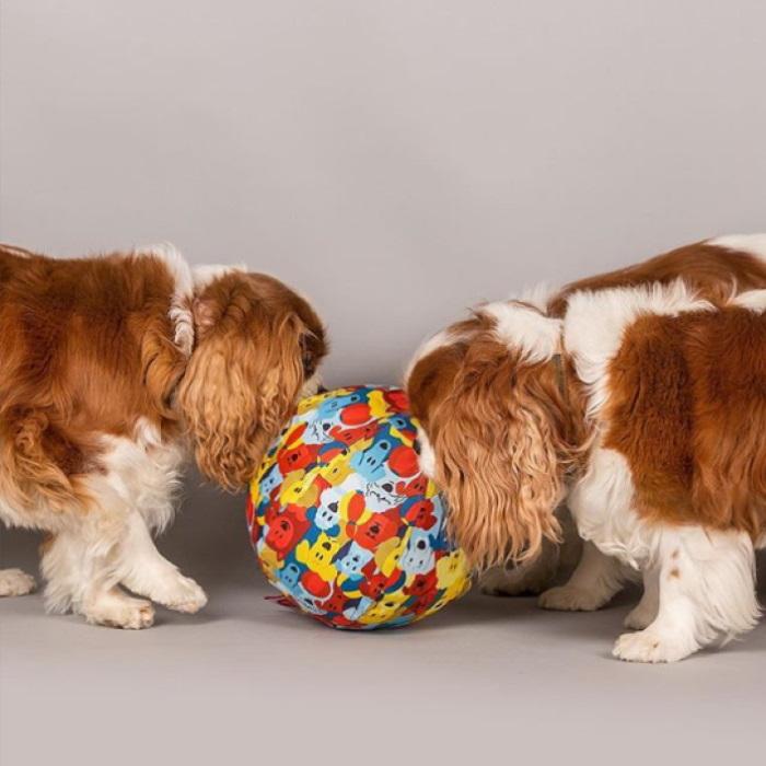 PetBloon Interactive Balloon Dog Toy 2