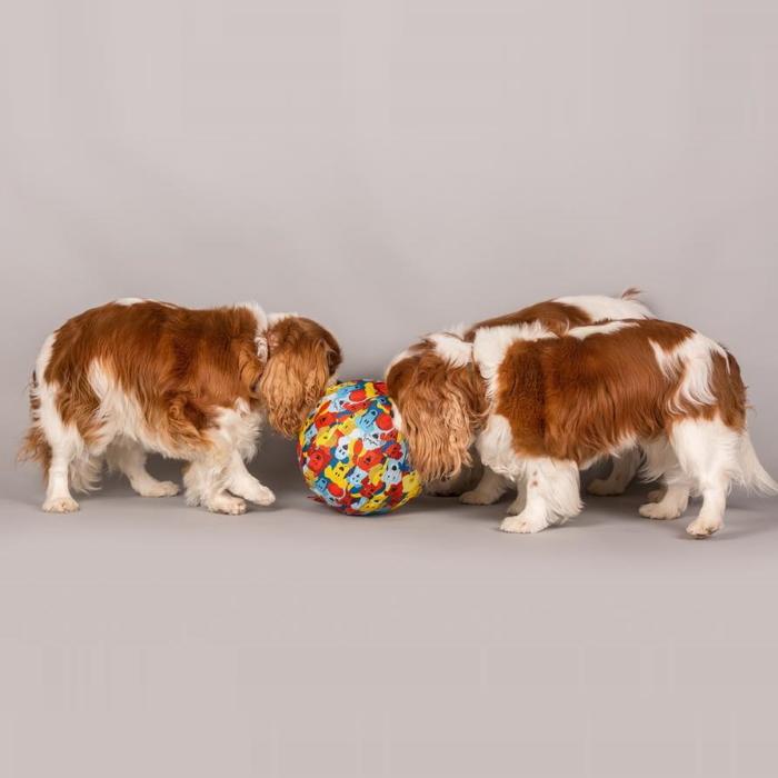 PetBloon Interactive Balloon Dog Toy 3