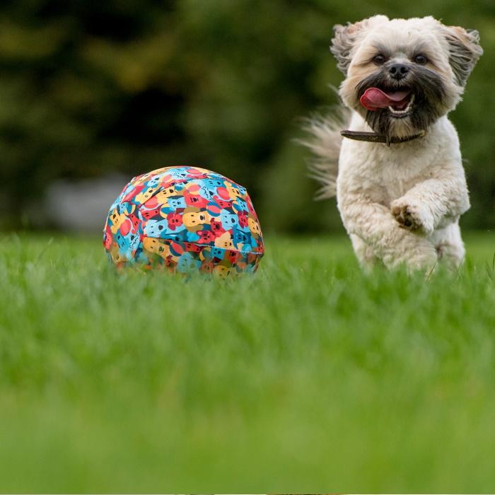 PetBloon Interactive Balloon Dog Toy 5