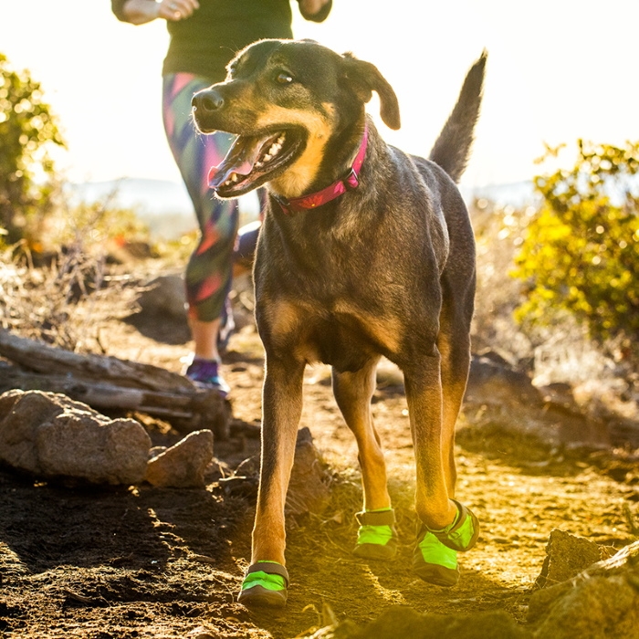 Ruffwear Dog Boots SummitTrex-MeadowGreen