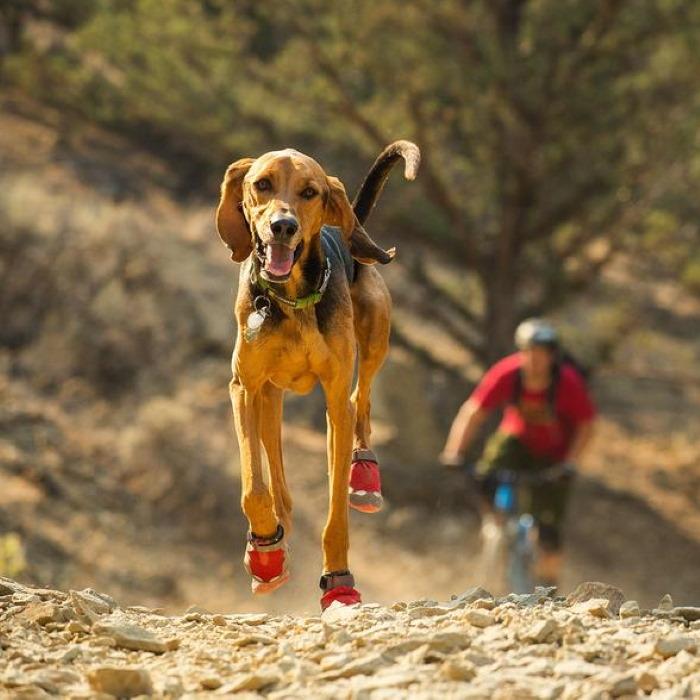 Ruffwear Grip Trex Dog Boots Red Currant LS2