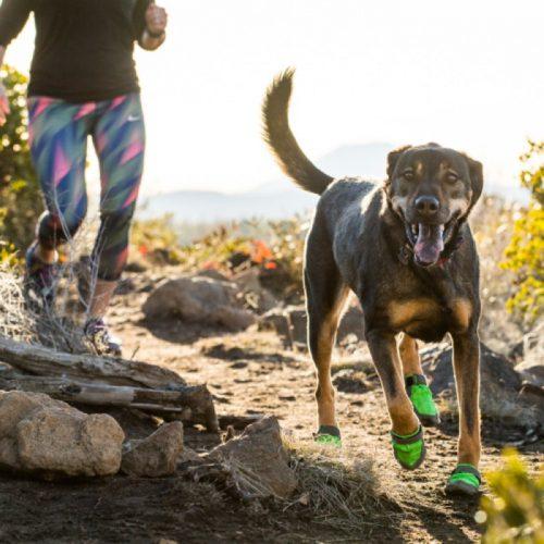 Ruffwear SummitTrex-MeadowGreen_Dog Boots