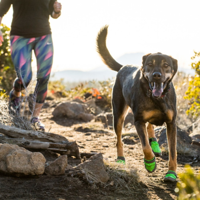 Ruffwear SummitTrex-MeadowGreen_Dog Boots