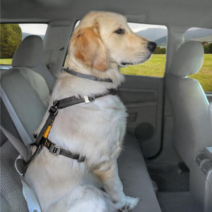 Kurgo Enhanced Strength Tru-Fit Car Harness with Restraint