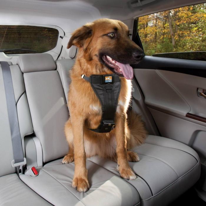 Kurgo Enhanced Strength Tru-Fit Dog Car Harness 1