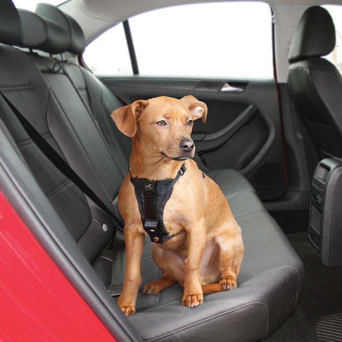 Kurgo Enhanced Strength Tru-Fit Dog Car Harness 10