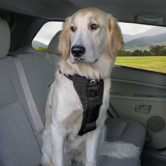 Kurgo Enhanced Strength Tru-Fit Dog Car Harness 11