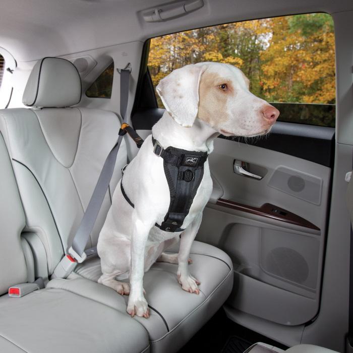 Kurgo Enhanced Strength Tru-Fit Dog Car Harness 12